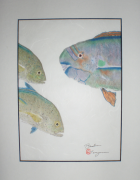 Blue Uhu & Omilu Pair (Rice Paper, 11x14 in)